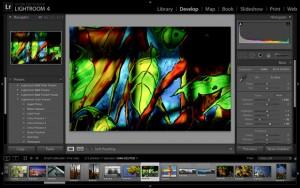 lightroom 4 screenshot