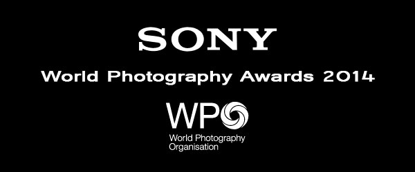 Sony World Photography Award 2014